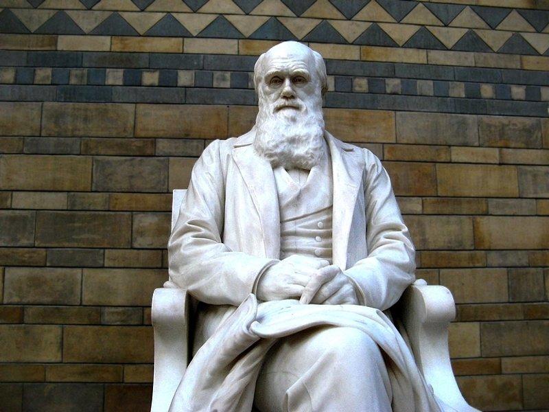 Christians embracing Evolution