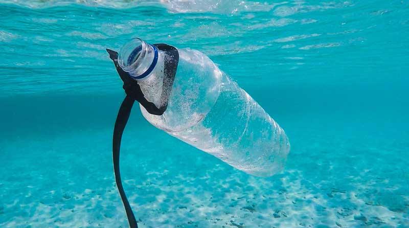 Wartburg Seminary students lead churchwide initiative to drop single use plastics